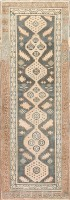 Antique Khotan Carpet 47250 Color Detail - By Nazmiyal